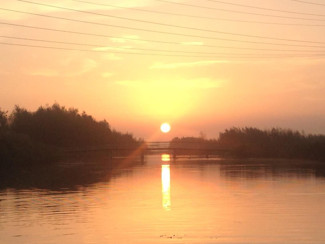 Foto zon polder